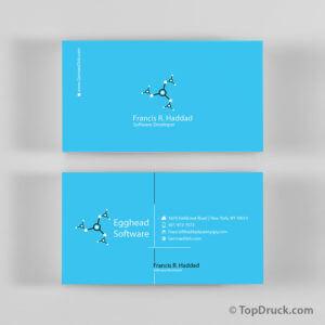 Software Developer Visitenkarten Design